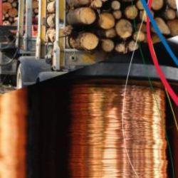 Invitación Charla sector commodities forestal