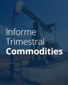 Categoria Informe Trimestral Commodities